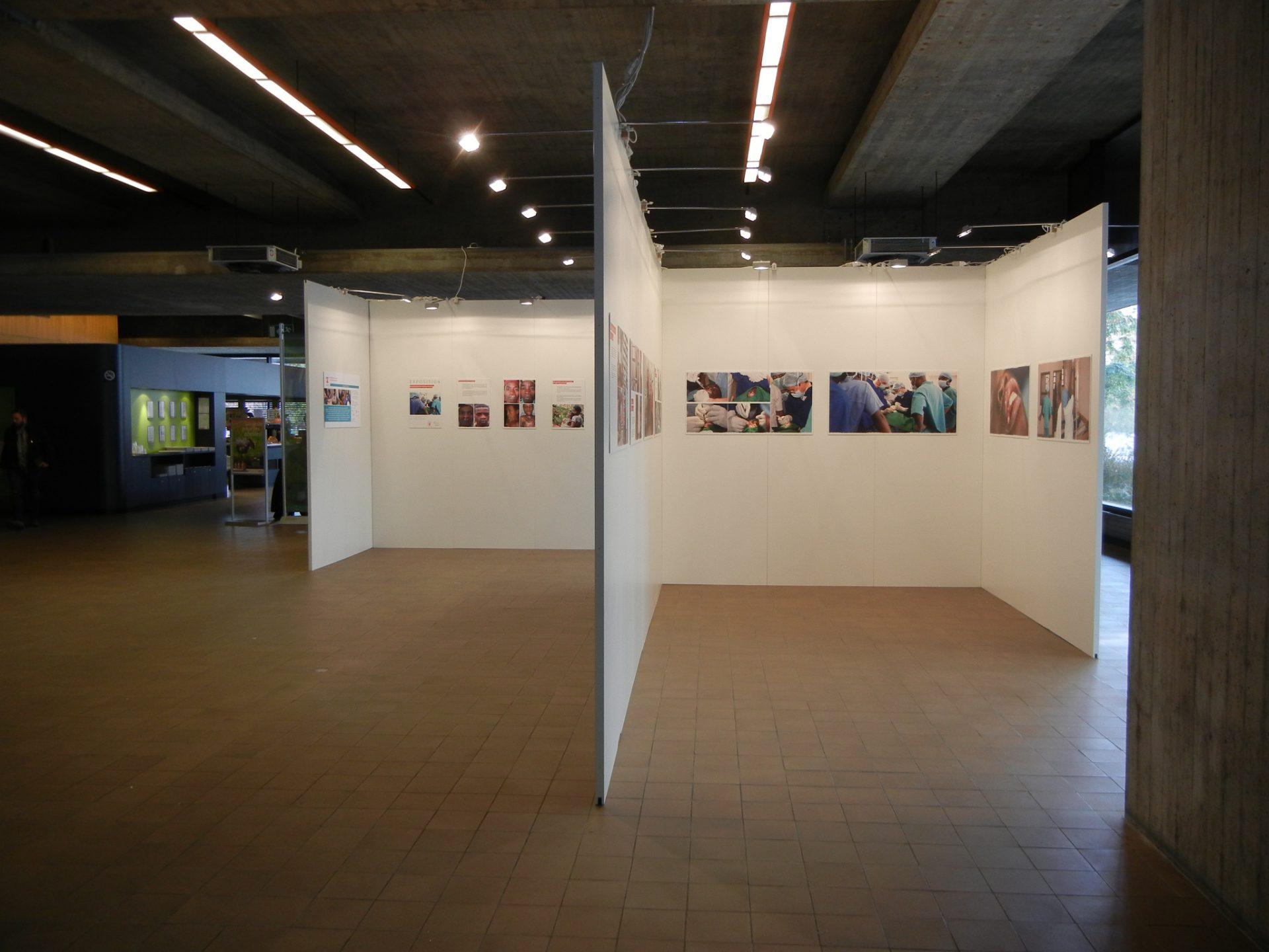 D Exhibition : Exhibitions u2013 luminance