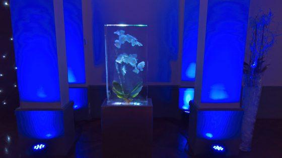 Décoration en glace avec orchidée